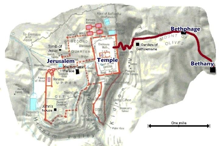 上图:主耶稣骑驴进京的路线,从右向左依次经过伯大尼、伯其法、客西马尼园、圣殿。
