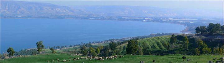 上图:加利利海位于海平面以下212米,周长53公里,南北长21公里,东西宽13公里,面积166平方公里,最深43米,是以色列最大的淡水湖。