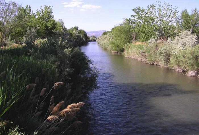 上图:约旦河下游,施洗约翰就在这一带施洗。