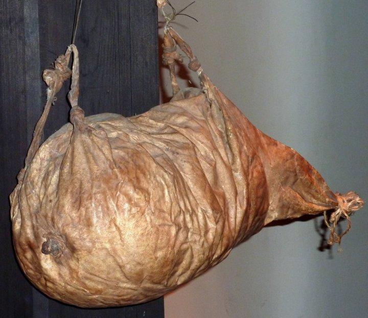 上图:一个失去弹性的旧皮袋。