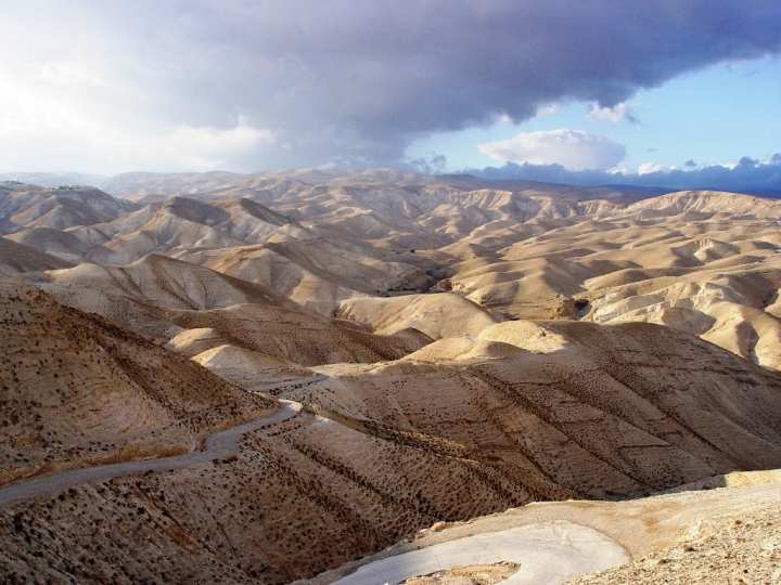 上图:犹大旷野位于犹大山地和约旦河谷之间。从橄榄山东面不远处开始就是绵延的山坡,草木稀疏,人迹罕至,从海拔900多米的犹大山地向东一直下降到海平面以下400多米的死海,南北约长100公里,东西宽约20-25公里。犹大旷野的地势由西至东下降约1300米,开始是许多平滑光秃的白垩山头连绵起伏,溪谷与沟壑纵横交错,靠近死海时逐渐变成陡峭的峡谷,到死海边成为嶙峋的悬崖。犹大旷野位于中央山地分水岭以东,地中海的雨云由西吹来,大部分雨水落在分水岭西面,分水岭东面的犹大旷野非常干旱,又有干燥的东风吹刮,雨季才偶尔有阵雨。在雨季的几个星期,干涸的旱溪(Wadi)中会激流奔涌,旷野中会长出少许植物。 大卫曾在犹大旷野躲避扫罗和押沙龙的追杀(撒上二十三14,24;二十四1;撒下十五23),他将犹大旷野描述为「干旱疲乏无水之地」(诗六十三1)。每年赎罪日,「归于阿撒泻勒的山羊」从圣殿被放到犹大旷野(利十六10)。以西结在异象中看见一条溪流从圣殿流出,经过这片旷野,灌溉两岸繁茂的树木(结四十七1-10)。施洗约翰在死海北面的那片犹大旷野开始传道(太三1-6),主耶稣很可能也在犹大旷野受魔鬼引诱(太四1)。