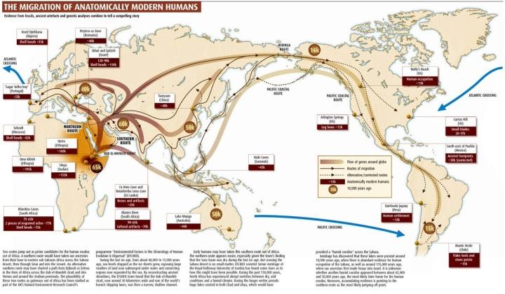 上图:科学家提出的人类走出非洲的迁徙路线。21世纪的遗传学家们通过研究线粒体DNA发现,全世界的人类基因都遗传自非洲的同一位原始母亲,并把这位母亲命名为「线粒体夏娃 Mitochondrial Eve」。