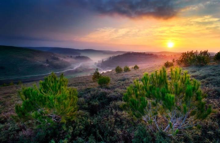 上图:以色列的早晨。