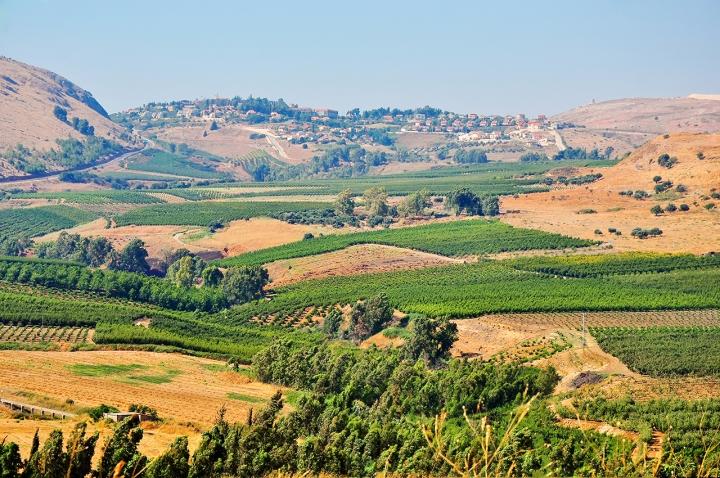 上图:多坍谷位于示剑以北约22公里,希伯仑以北约140公里,位于迦密山和基利心山之间的平原,水草茂盛,至今仍是良好的牧场。多坍遗址(Tell Dothan)始建于主前3000年,是基列经伯善前往埃及的商道上的一个重要站点,所以米甸商队会经过这里。