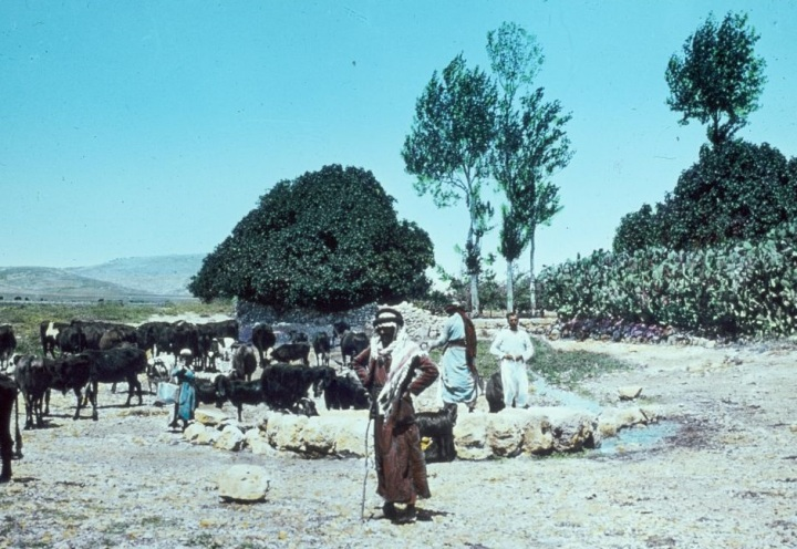 上图:从北面看约瑟坑(Joseph's pit or Joseph's well)。