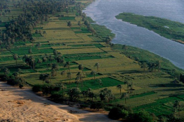 上图:尼罗河畔的肥沃土地。