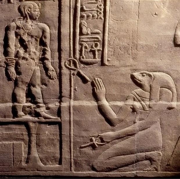 上图:古埃及神话中的生育女神海奎特(Heqet),是一个蛙头人身或者是头上有只蛙的女神。古埃及妇女在产期将至时,都要敬拜海奎特的神像,以保佑分娩顺利。