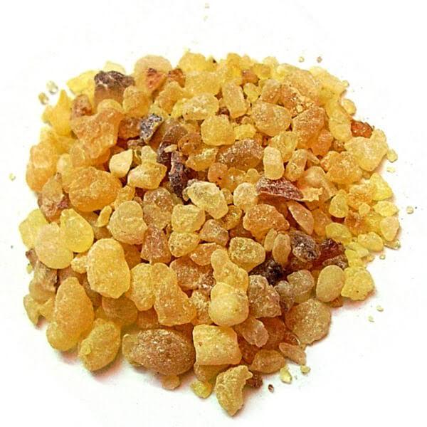 上图:乳香(Frankincense)是由乳香属植物印度齿叶乳香(Boswellia serrata)、也门乳香(Boswellia frereana)、苏丹纸皮乳香(Boswellia papyrifera)和索马里神圣乳香(Boswellia sacra)产出的含有挥发油的香味树脂,古代的集散中心是以示巴王国为中心的也门地区。美索不达米亚和埃及都广泛使用乳香,但乳香的产量不高,所以十分昂贵,是骆驼商队贸易的主要商品。素祭只用少量的乳香。