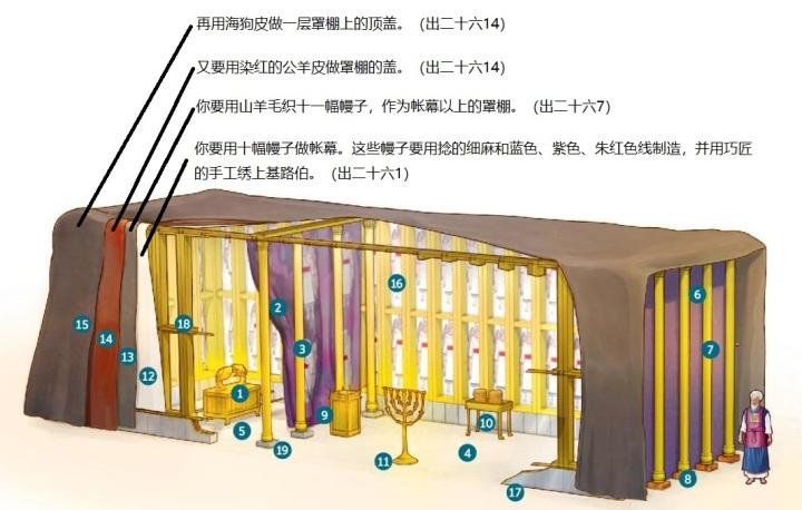 上图:帐幕4层幔子示意图。挂在最里层的是十幅细麻和蓝色、紫色、朱红色线制造的彩色幔子(出二十六1-6),外面罩上十一幅山羊毛的罩棚(出二十六7-13),然后用染红的公羊皮做罩棚的盖(出二十六14),最外层用海狗皮做罩棚上的顶盖(出二十六14)。圣经并没有提到公羊皮罩棚盖和海狗皮顶盖的尺寸,有可能只是遮盖了帐幕顶部。