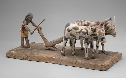 上图:古埃及第11王朝时期的(主前2133-1991年)的木雕,一个农夫正在耕地,牛背上负着轭。「轭」指加在牛后颈上的横木,用来驱使牲畜,比喻以色列人在埃及为奴时背负重担,有如负轭的牛。