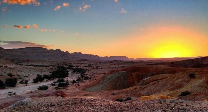 上图:以色列南地的早晨,最适合人在田间默想。