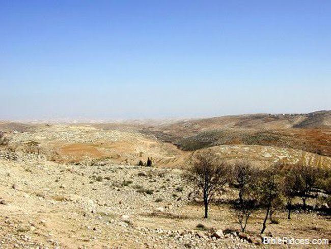 上图:犹大山地西弗的旷野,大卫躲避扫罗追杀时曾藏在这里(撒上二十三14)。