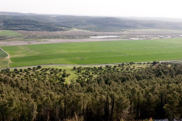 上图:从琐拉俯瞰梭烈谷。蜿蜒的梭烈谷是从沿海平原前往耶路撒冷的重要通道,谷中的梭烈溪是犹大山地最大、也是最重要的流域,从中央山地穿过示非拉丘陵流向地中海。这个地区很适合种葡萄,在士师时代是以色列人与非利士人的分界线。