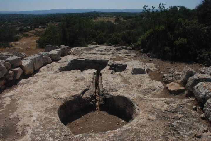 上图:以色列的古代压酒池遗迹。酒醡分上下两层酒池,中间有一条通管相连。酒池可能是一块凿空的石头,也可能用砖石砌成。葡萄放在位置稍高的上层酒池中,工人用脚踹葡萄,汁液透过通管流到下层的酒池中。在这种地方打麦子,只能用手工打少量麦子。