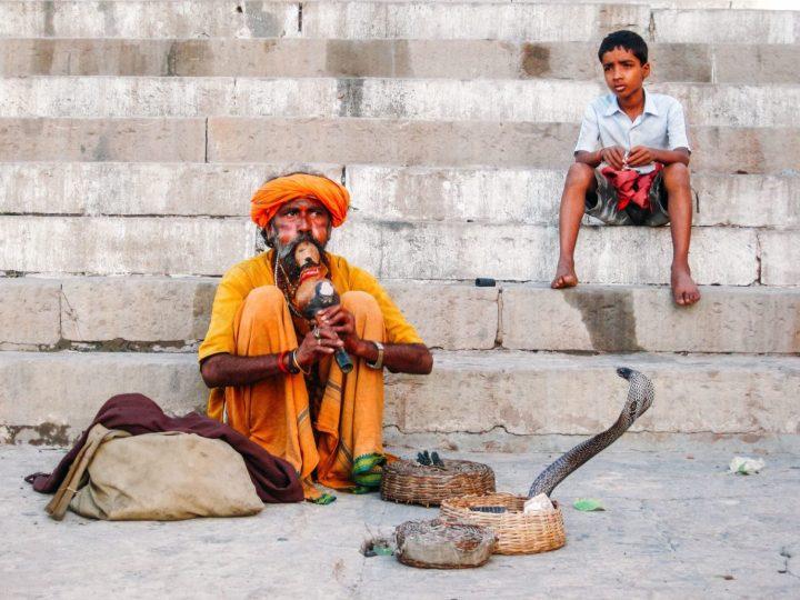上图:一个耍蛇人正在吹笛子指挥眼睛蛇起舞。