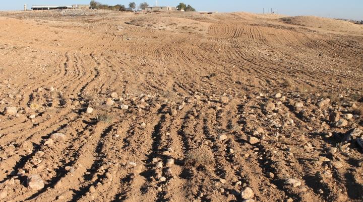 上图:别是巴的农田,可以清楚地看到田间布满了大大小小的石头。