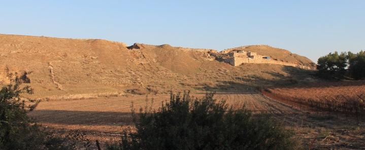 上图:拉吉的农田,可以清楚地看到田间布满了大大小小的石头。
